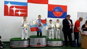 турнир по дзюдо краснознаменск